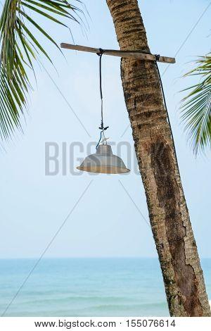 Lamp on palm tree ay the beach