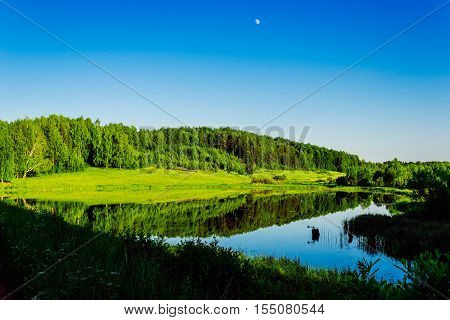 Pond and forest on the coast in summer evening