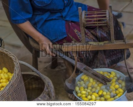 Silkworm cocoon in basket,The equipment for silk.