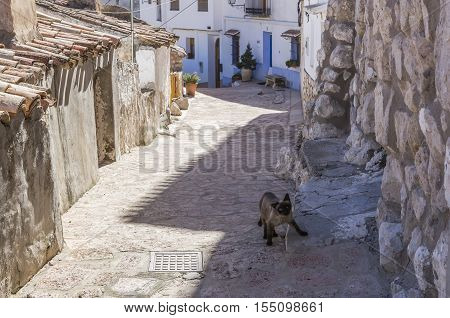 Alcala del Jucar Spain - October 29 2016: Narrow street with white painted houses typical of this town take in Alcala of the Jucar Albacete province Spain