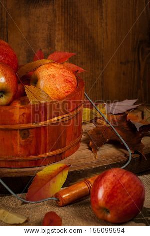 Fresh harvest of Red Apples. Nature theme. Selective focus.