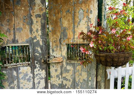 Flowers hanging next to an old rustic wooden door in Salento Colombia