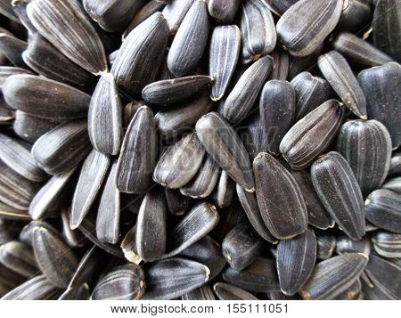 Background of unshelled black sunflower seeds. Healthy food