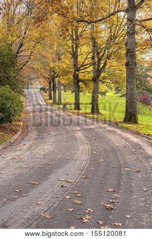 Road in a Willamette national cemetery Portland Oregon.