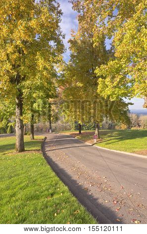 Willamette national cemetery landscape and trees on an Autumn day Oregon.