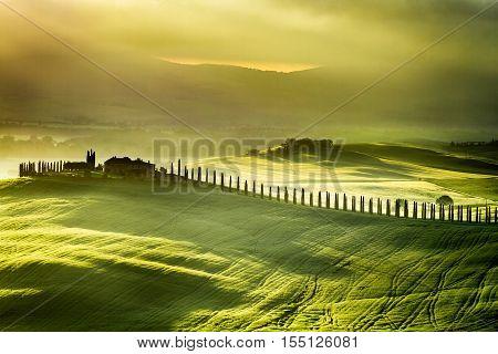 Sunrise at San Quirico d'Orcia, Tuscany, Italy