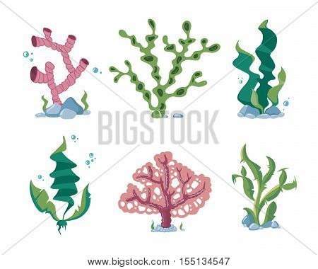 Underwater seaweeds, aqua kelp, ocean and aquarium plants vector set. Aquatic nature kelp life illustration