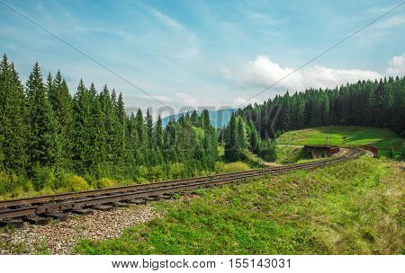 railway path in the green summer forest