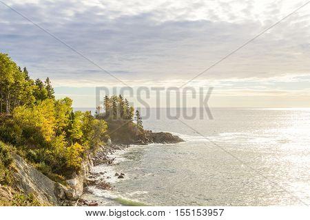 Scenic view (Highlands National Park Cabot Trail Cape Breton Nova Scotia Canada)