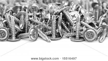 screws isolated on a white background poster