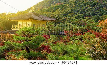 Golden Pavillion Or Kinkakuji In Autumn