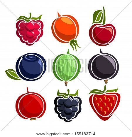 Vector Set colorful Berries icons: raspberry, rosehip, cherry, blueberry, gooseberry, blackcurrant, redcurrant, blackberry, strawberry; set of abstract simple berry logo or icon, isolated on white.
