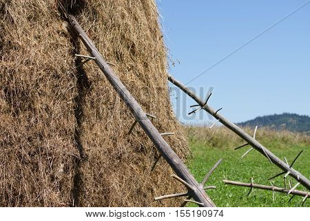 view of a hay bundle close up