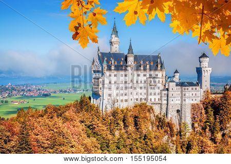 Neuschwanstein Castle With Autumn Leaves In Bavaria, Germany