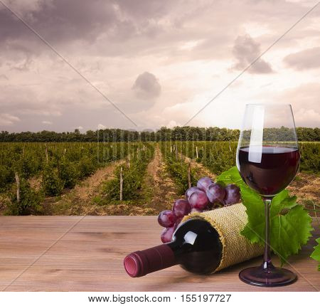 Wine bottle glass and red grape on wineyard background