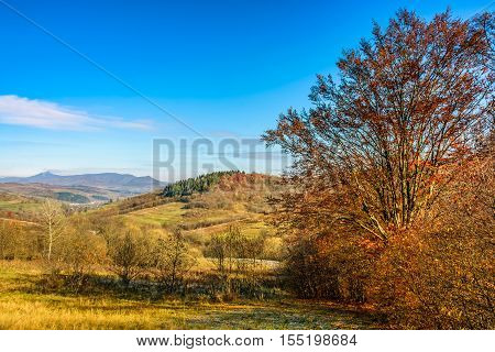 Autumn Rural Landscape With Meadow And Trees On Hillside