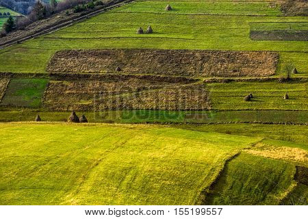 Agricultural Field In Mountains At Sunrise