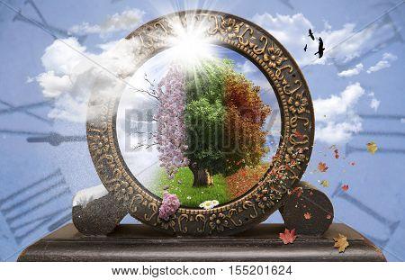 Four season tree in a old clock