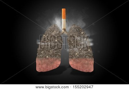 Cigarettes with lungs full of ash, health concept