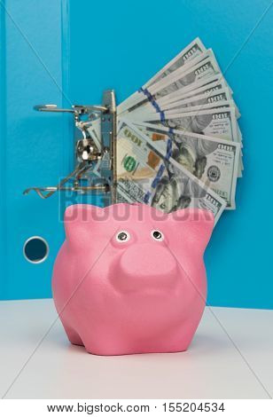 money in a folder with a pink piggy bank on table