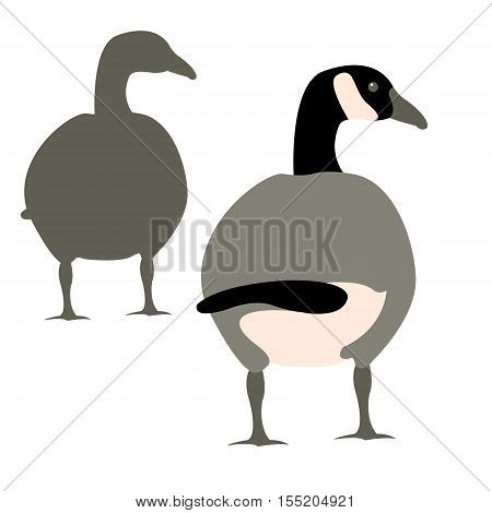 vector illustration wild geese Flat style set