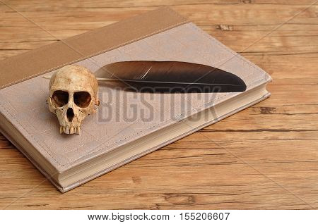 Vervet monkey skull with a quill on top of an old book