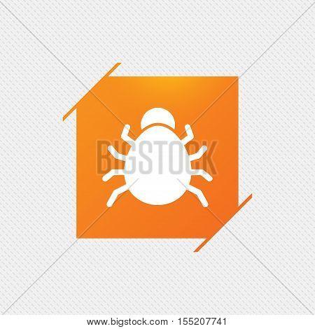 Bug sign icon. Virus symbol. Software bug error. Disinfection. Orange square label on pattern. Vector
