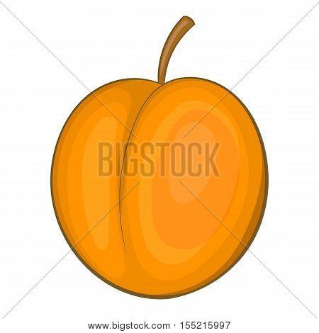 Peach icon. Cartoon illustration of peach vector icon for web
