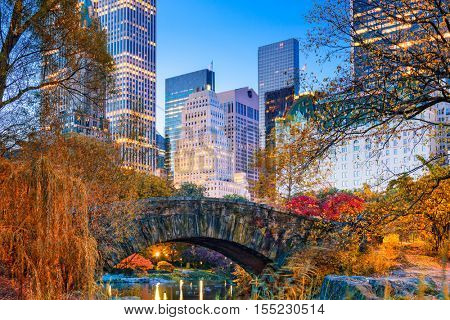 Central Park during autumn in New york City.