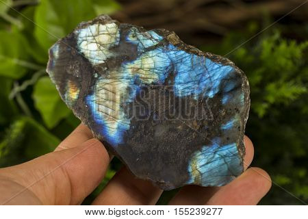 labradorite  mineral specimen stone the natural geology