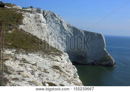 A view of the chalk cliffs overlooking Scratchells Bay