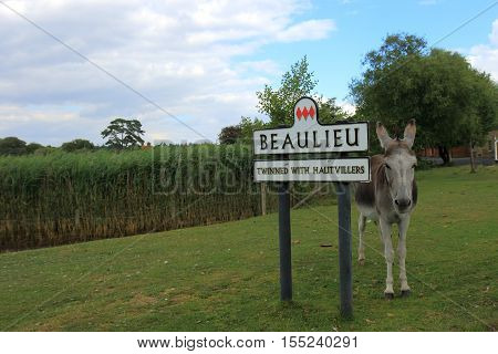 A Donkey standing next to the signpost at Beaulieu