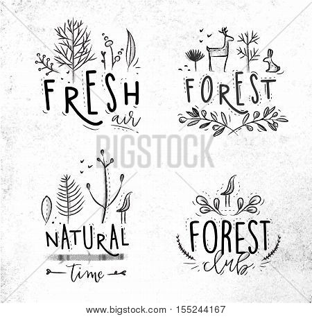 Forest labels lettering forest fresh air forest club natural time drawing with coal