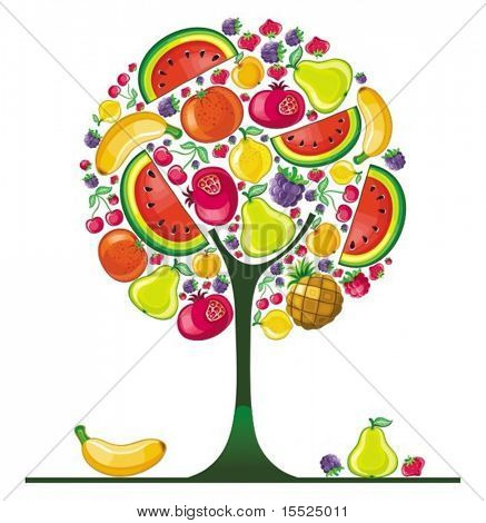 Different types of delicious fruits combined in round tree shape. To see similar, please VISIT MY PORTFOLIO