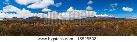 Mt. Ngauruhoe and Mt. Ruapehu volcanoes, Tongariro Crossing National Park - New Zealand. Wide panoramic photo