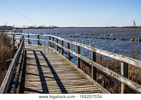 Wooden footpath at Back Bay National Wildlife Refuge in Virginia Beach, Virginia.