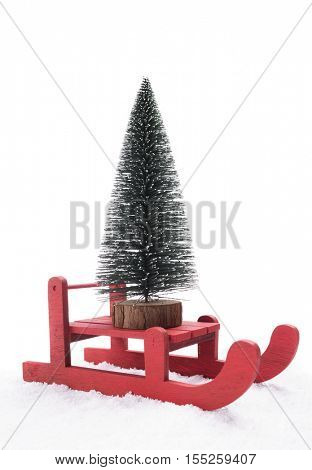 Red sled carrying a pine tree
