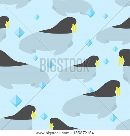 Walrus in water seamless pattern. Large natatorial seal in texture of teeth. Animal Ornament from Arctic and Antarctic. Natatorial animal north pole