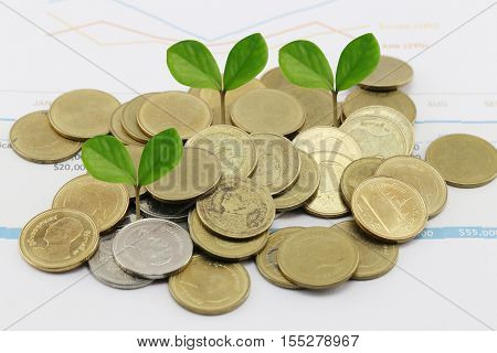 silver coin stack of business graph and have treetop in business growth concept on paper of report assessed income.