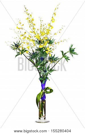 Miniature orchids and eryngium flowers in vase isolated on white background. Closeup.
