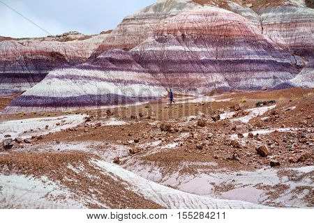 Stunning Striped Purple Sandstone Formations Of Blue Mesa Badlands In Petrified Forest National Park