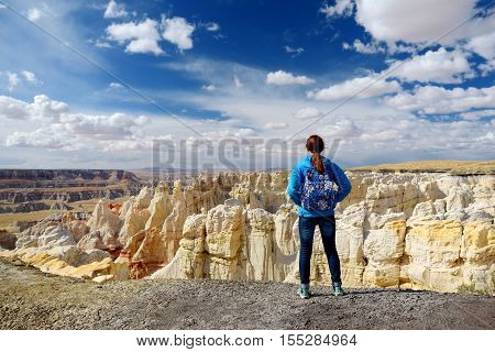 Hiker admiring views of stunning colorful sandstone formations of Coal Mine Canyon Arizona USA