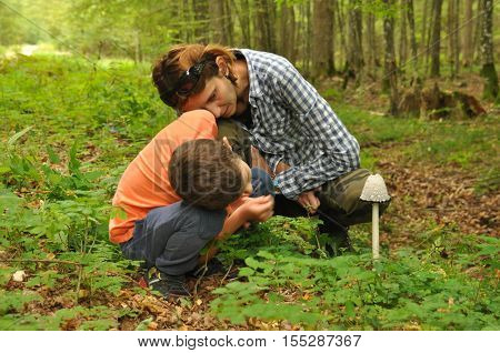 The family a mother with her son to identify edible and poisonous mushrooms in the forest poster