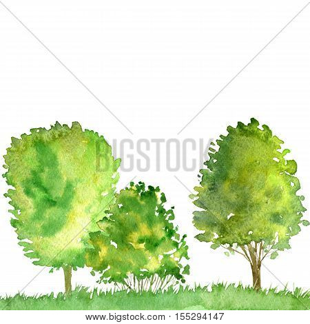 watercolor landscape with trees and grass, green foliage, abstract nature background, forest template, hand drawn illustration