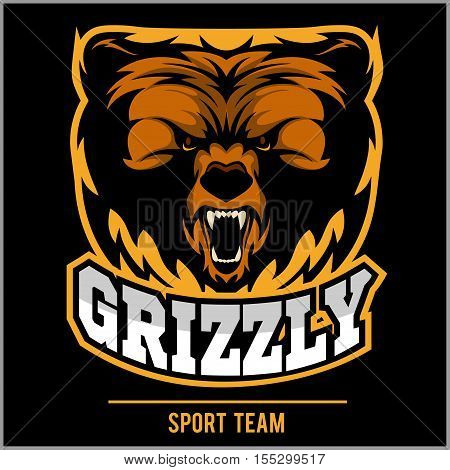 Grizzly mascot, team logo design. angry bear.grizzly bear logo for a sport team on dark background