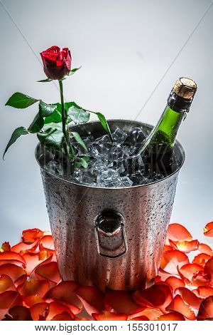 Closeup of red rose and cold champagne in bucket