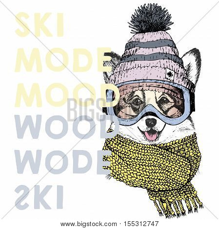 Vector poster with close up portrait of welsh corgi dog.Ski mode mood. Puppy wearing beanie scarf goggles. Hand drawn illustration. Use for sport shop resort ski-rent promotion print design.