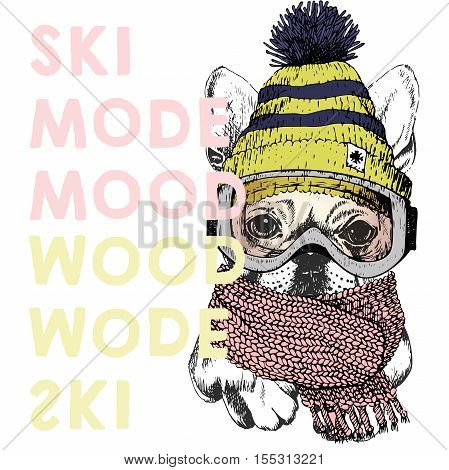 Vector poster with close up portrait of beagle dog.Ski mode mood. Puppy wearing beanie scarf and snow goggles. Hand drawn illustration. Use for sport shop resort ski-rent promotion print design.