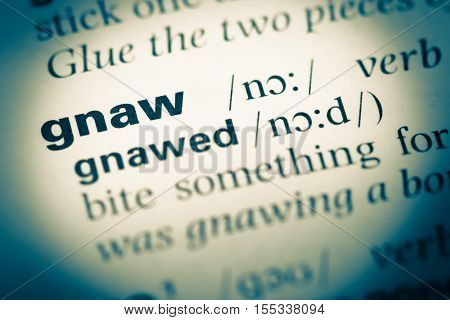 Close Up Of Old English Dictionary Page With Word Gnaw