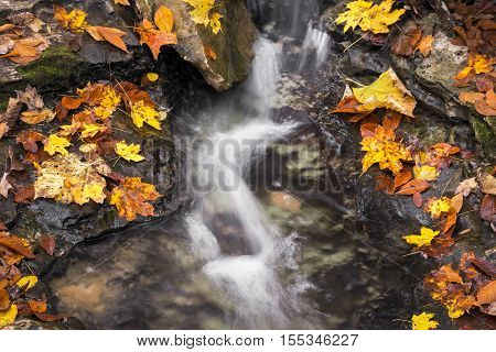 A babbling brook flows over a rocky stream bed surrounded by colorful fall foliage.
